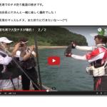 宿毛湾のチヌ釣り動画(その2)