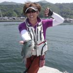 宇和島湾の堤防でグレ釣り