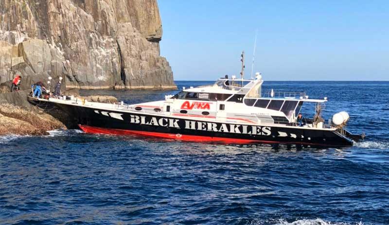 男女群島 ブラックヘラクレス